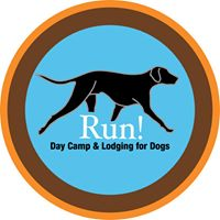 run day camp for dogs.jpg