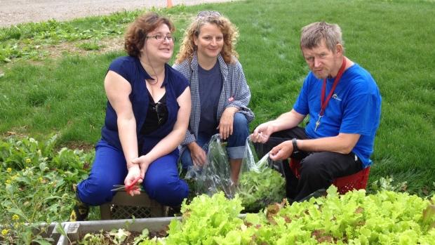 breton-ability-centre-gardening