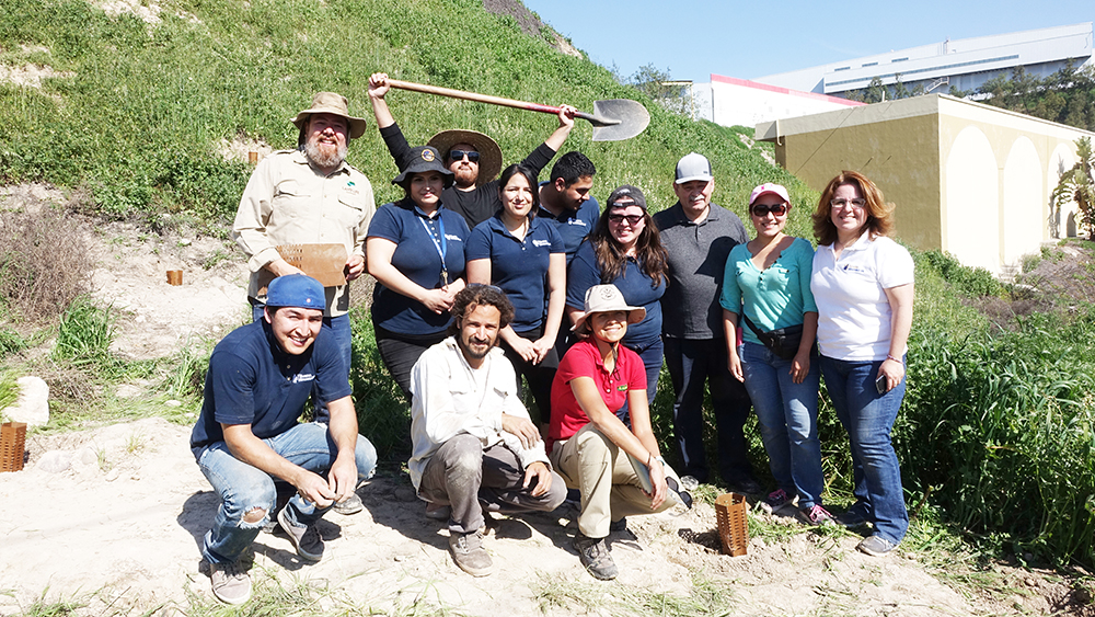 Land Life partnered with local NGO Tijuana Innovadora to restore the embankment zone.