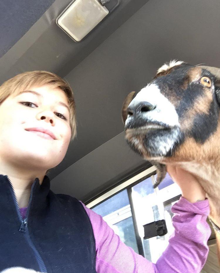 Catherine Canann Goat Jasmine 2017
