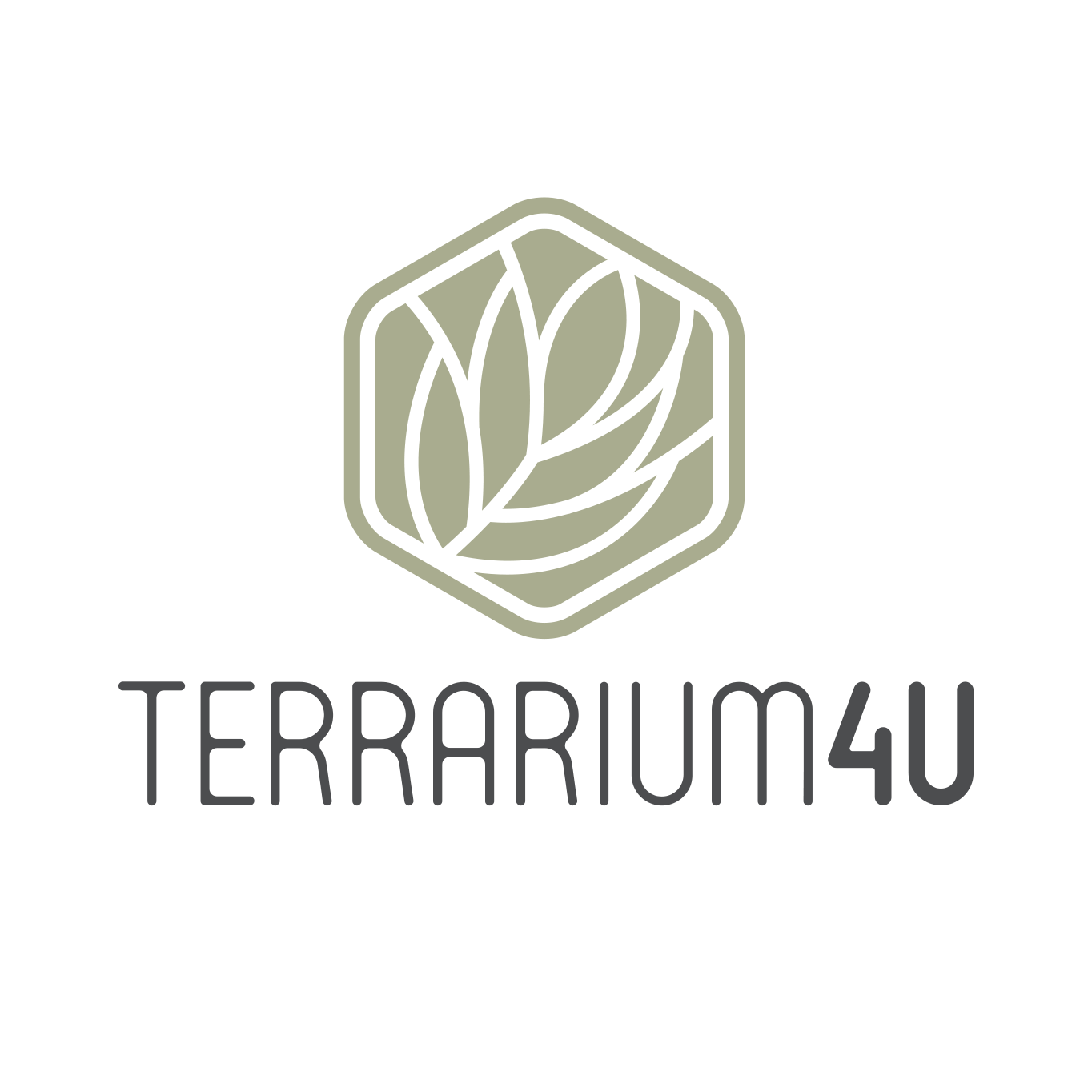 Closed Terrariums Terrarium4u