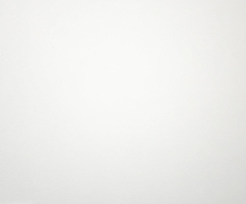 White L101