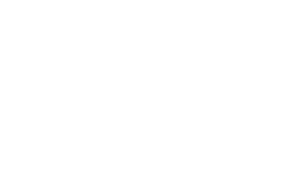 visionsummit2017_narrativeachievementaward.png