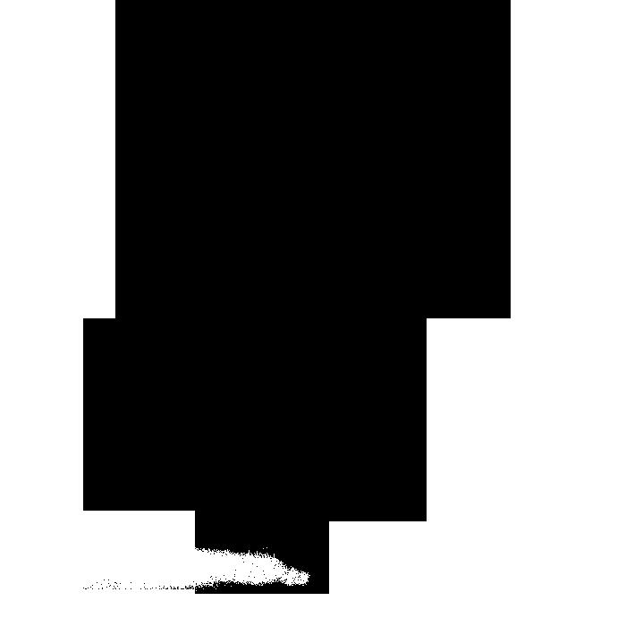 noun_733762_cc.png