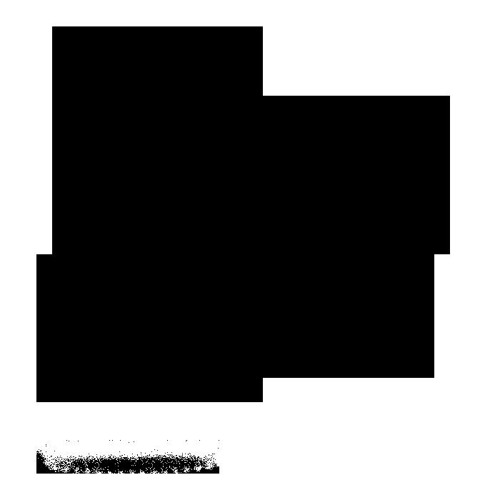 noun_733769_cc.png
