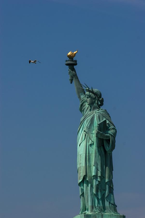 Lady Liberty & Co.