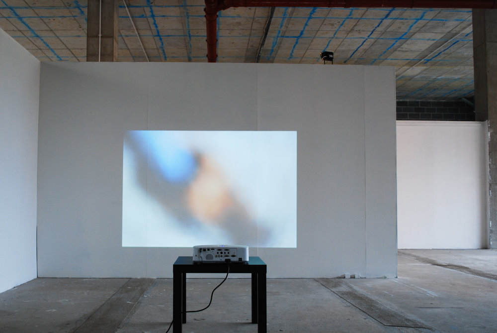 Holly Rowan Hesson, See here (see), 2013, projection (series of 20 images), dimensions variable