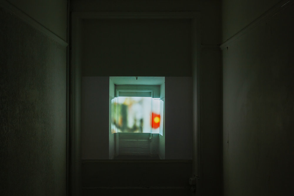 Holly Rowan Hesson,  Overwrite,  2016, 47 image rolling projection, dimensions variable