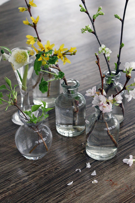 SpringFlowersInBloom_HannaWendelbo