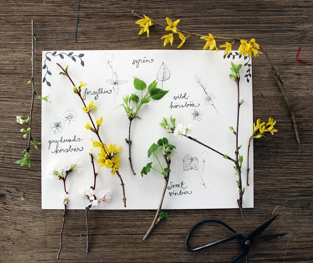 SpringFlowerMoodboard_HannaWendelbo