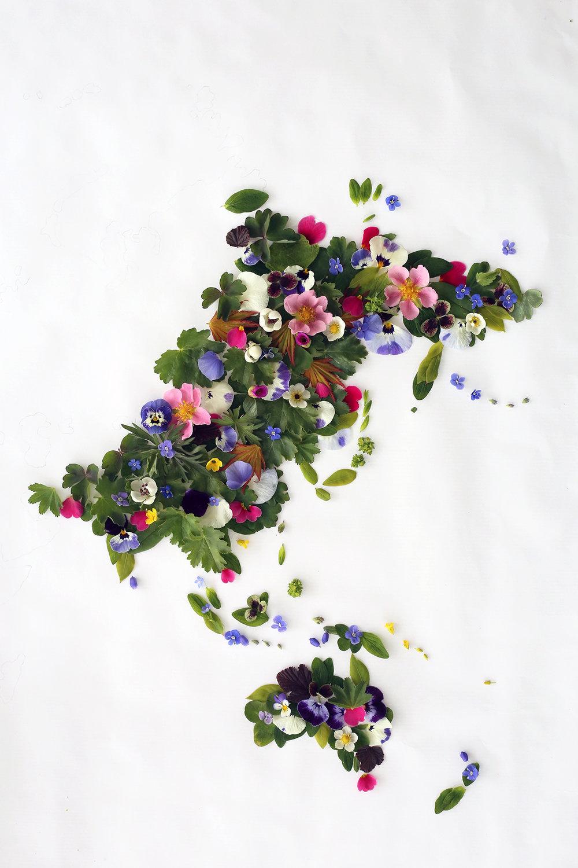 HannaWendelbo_Blomsterpill_Asien