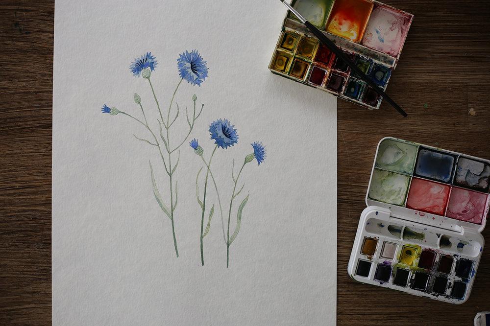 Akvarell-blåklint.jpg