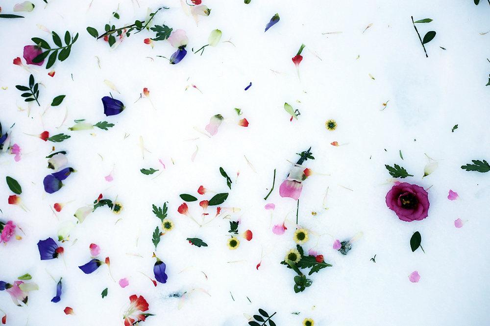 Blomsterspill_Inos_HannaWendelbo.jpg