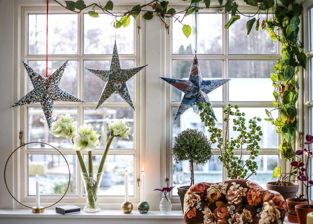 Julstjärna_tapet_HannaWendelbo-26.jpg