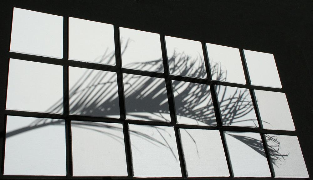 leaf shadow.jpg