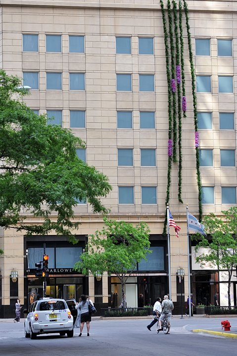 8 stories of Hydrangea and Vine Park Hyatt Chicago