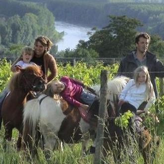 """Hélène et David Barrault (  Château Tire Pé, Bordeaux Supérieur)   Hélène et David ont repris le domaine en 1997. Ce terroir dans le sud du Langonnais est idéal: vignoble en côteau, exposition sud, face à la Garonne, sols argilo-calcaires... """"Le vin se fait à la vigne"""" comme David aime à le répéter. En bio depuis 2008, le domaine est certifié Ecocert depuis 2011. Leurs vins sont d'un fruit et d'une fraîcheur incroyables... sans pallier texture et profondeur ! L'encépagement est principalement en merlot, avec cabernet franc et malbec en fonction des cuvées."""