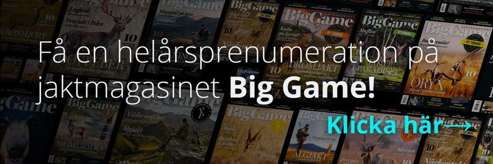 thegreatwild-big-game.png