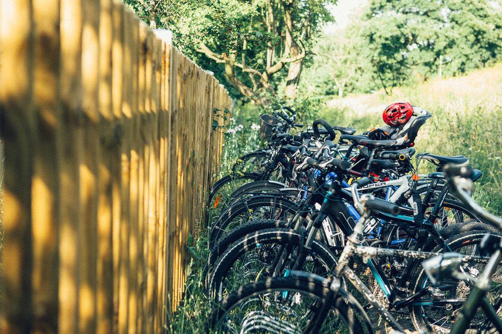 Natur-Garten-Leipzig-47.jpg