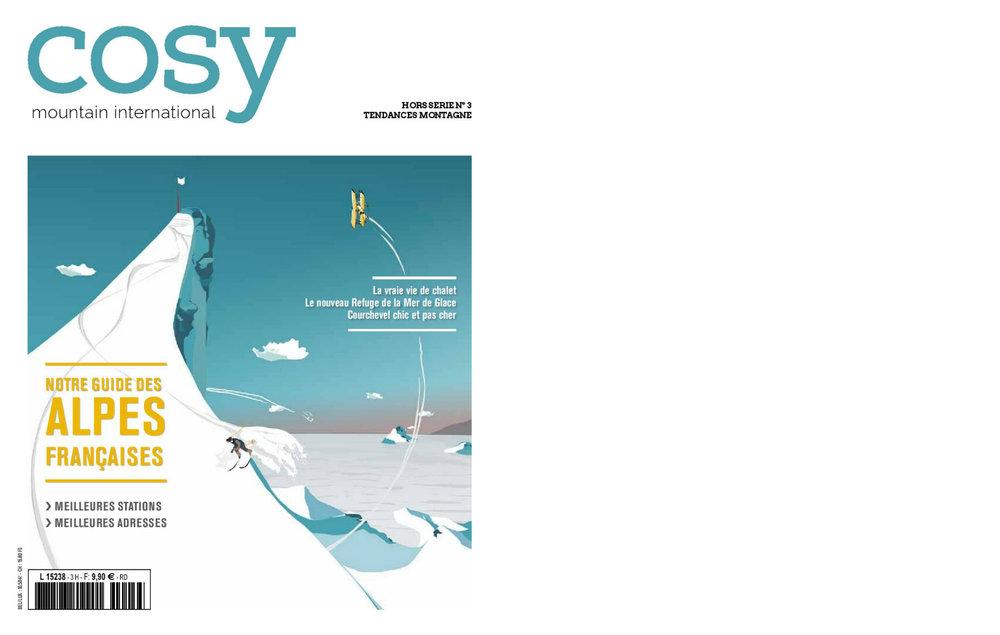 COSY1.jpg