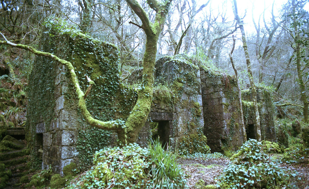 Kennel Vale, Ponsanooth   The remains of the Kennel Vale gunpowder works are said to be haunted by the ghost of William Dunstan. A father who died after a gunpowder explosion in 1838 which caused many deaths and destroyed five mills.
