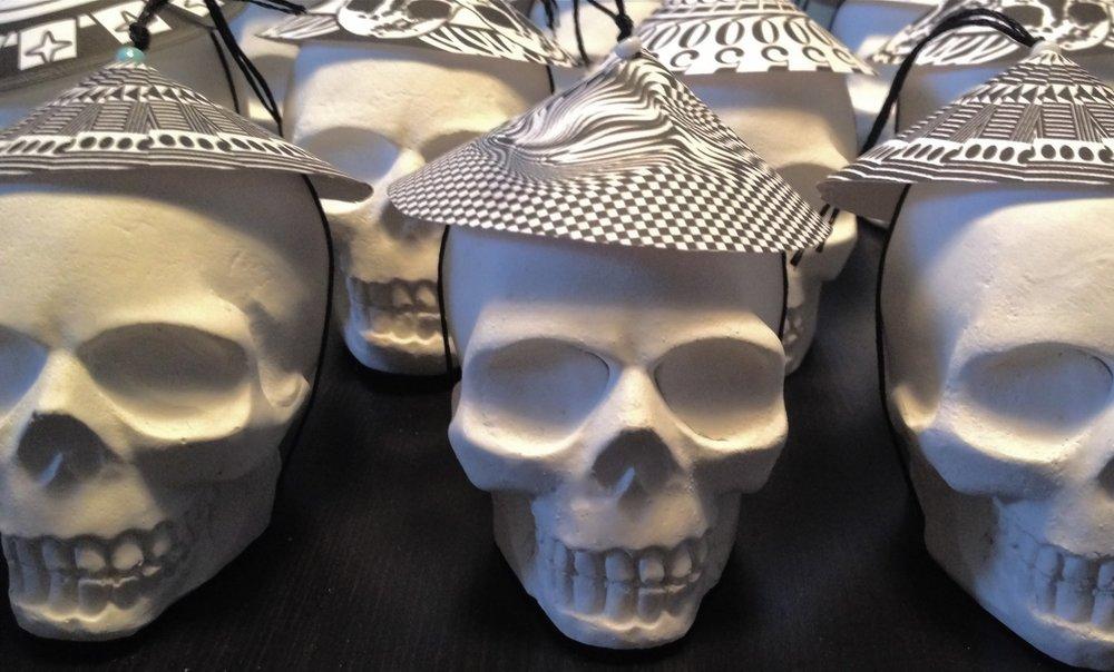 Plaster Skulls