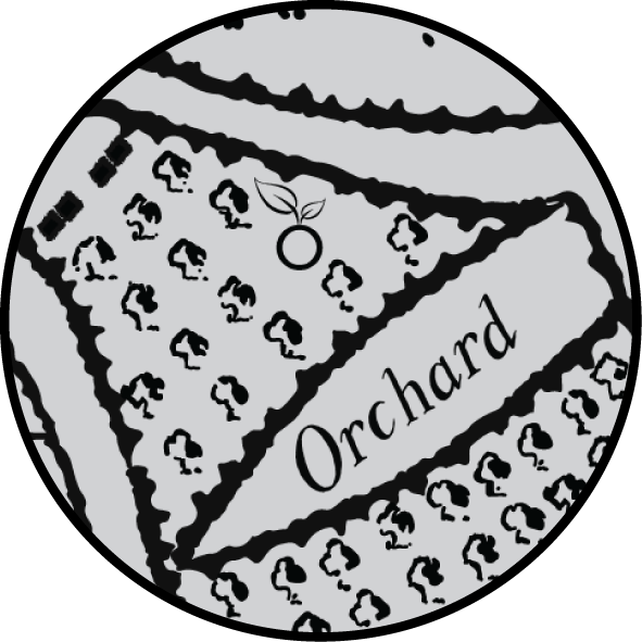 Orchard Clinic  Where it all began!