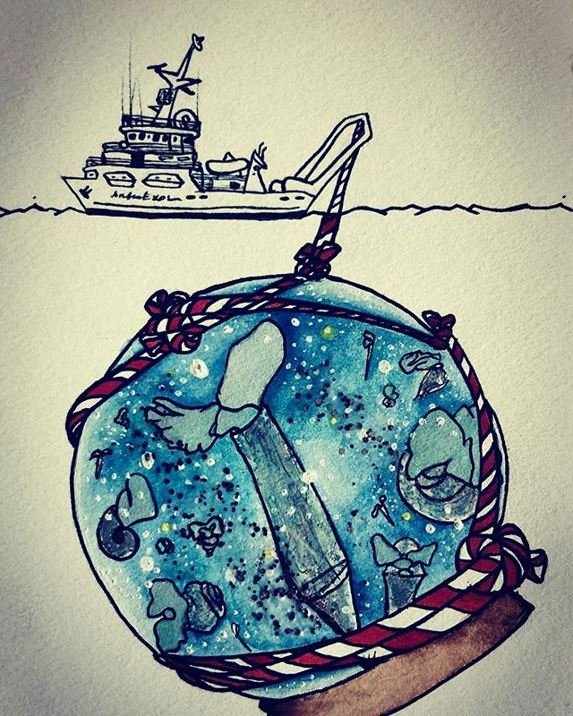 Happy holidays from #cuvierinacolumnella and some other #pteropods #rvatlanticexplorer