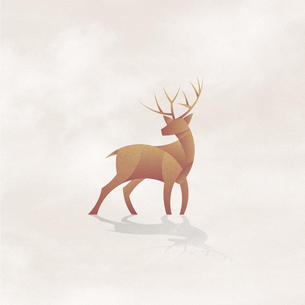 Deer_2018-12.jpg