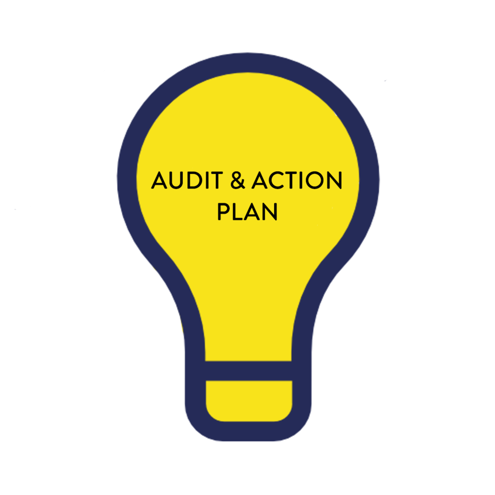 Audit & Action Plan