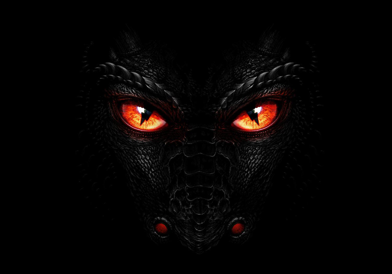dragon u2014 palina savychuk