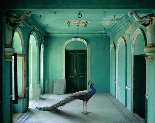 Karen Knorr: The Queen's Room, Zanana Palace, Udaipur.