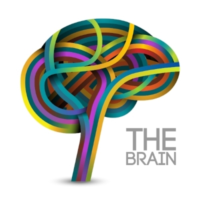 Lucy Brown hypnotherapist cirencester explains the brain