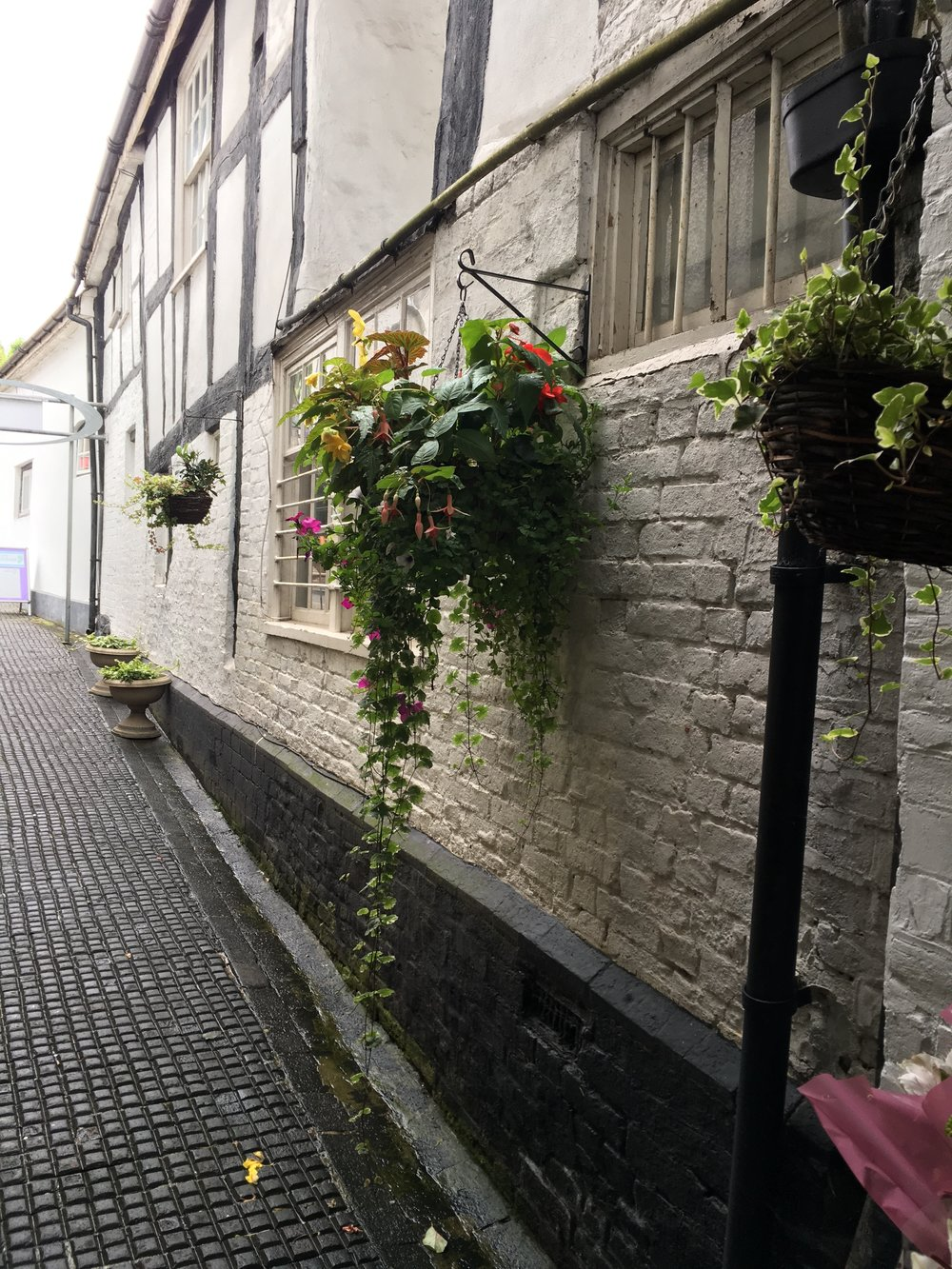 Ledbury is full of buildings like this with beautiful old brickwork, characterful windows and look at those hanging baskets! Inspiration for a trailing bouquet.