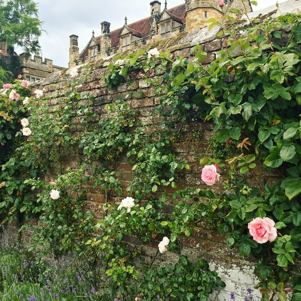 I absolutely love the colour of these pretty roses trailing on the old brick wall. I so love pink & green and I think they're beautiful colours to use at a wedding.