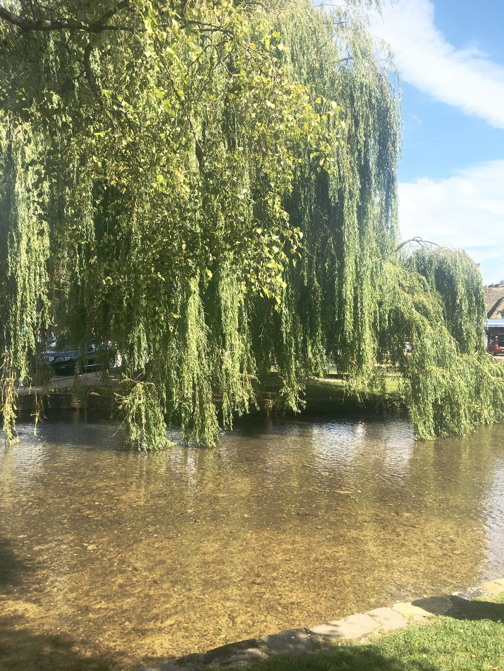 This simply stunning weeping willow is so befitting here in this quaint little village.