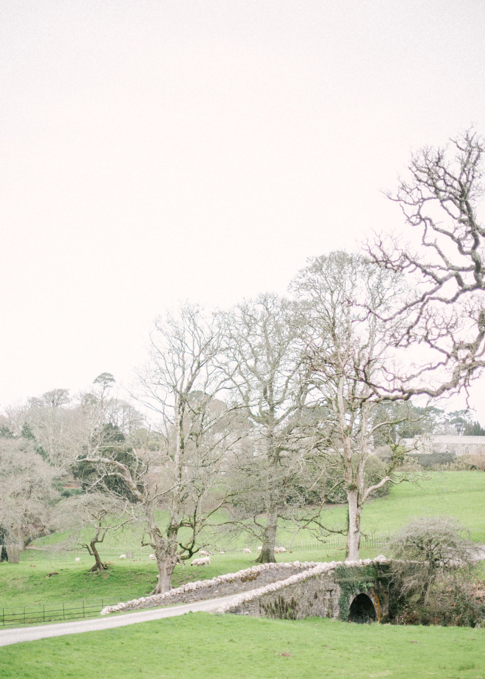 The Grounds at Boconnoc Cornwall Wedding Venue-Stately Home Wedding-The Timeless Stylist-Wedding Design Styling and Coordination