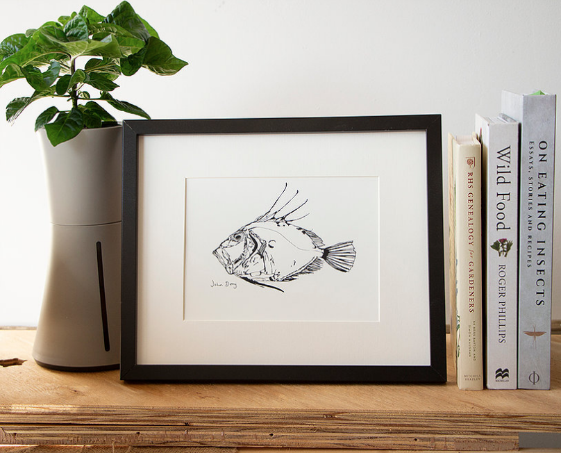 Project Fish Prints