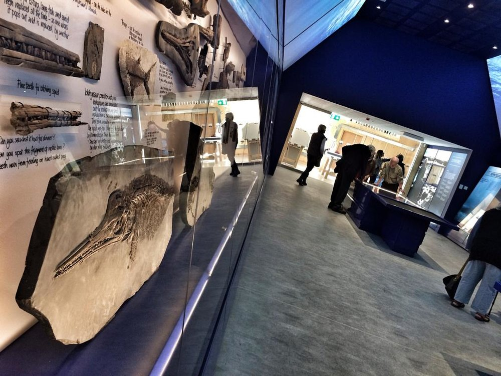 Kimmeridge Museum interior  – image courtesy of HLF