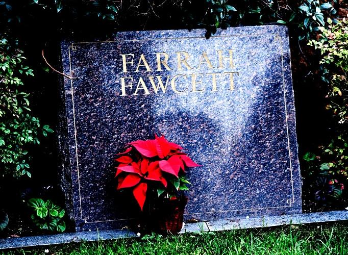 farrahfawcett1-682x500.jpg