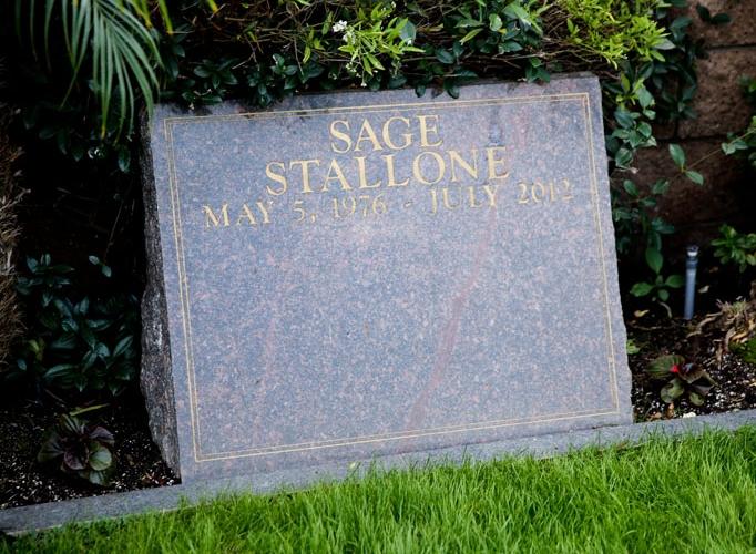 Stallone-682x500.jpg