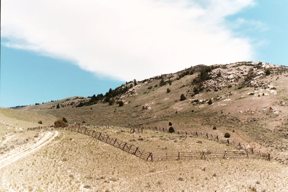 Bannack Hillside 1.JPG