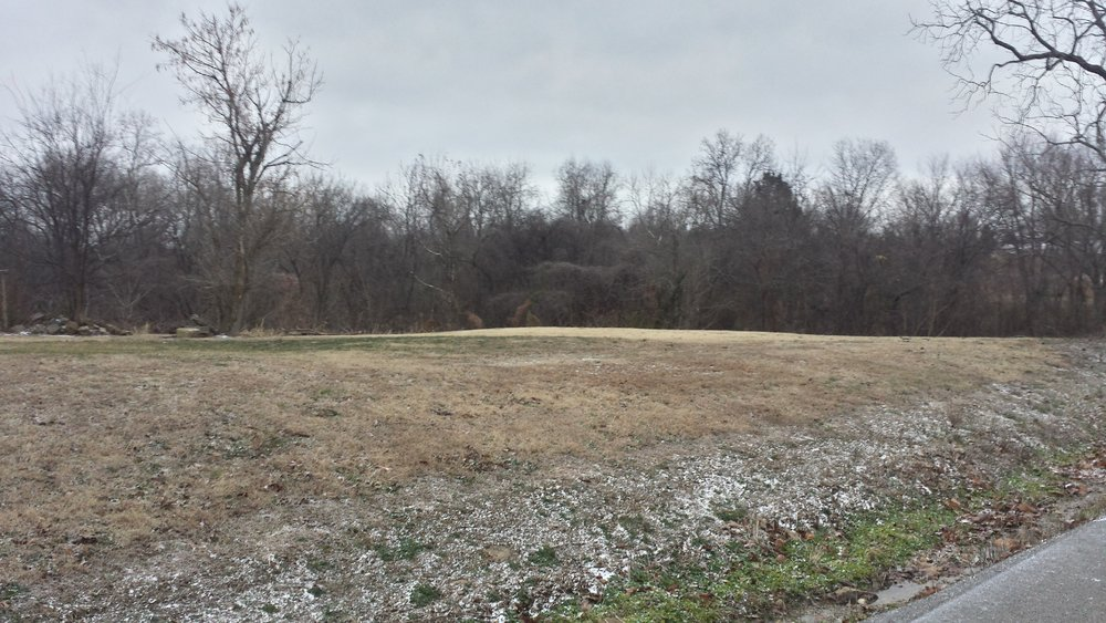 Copy of Copy of South-facing view of homesite. Treeline in background is gully.