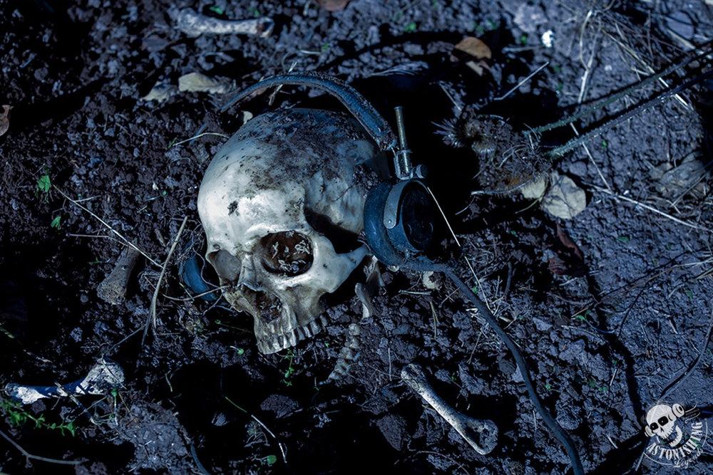 AreeSkull-Logo-NoType.jpg