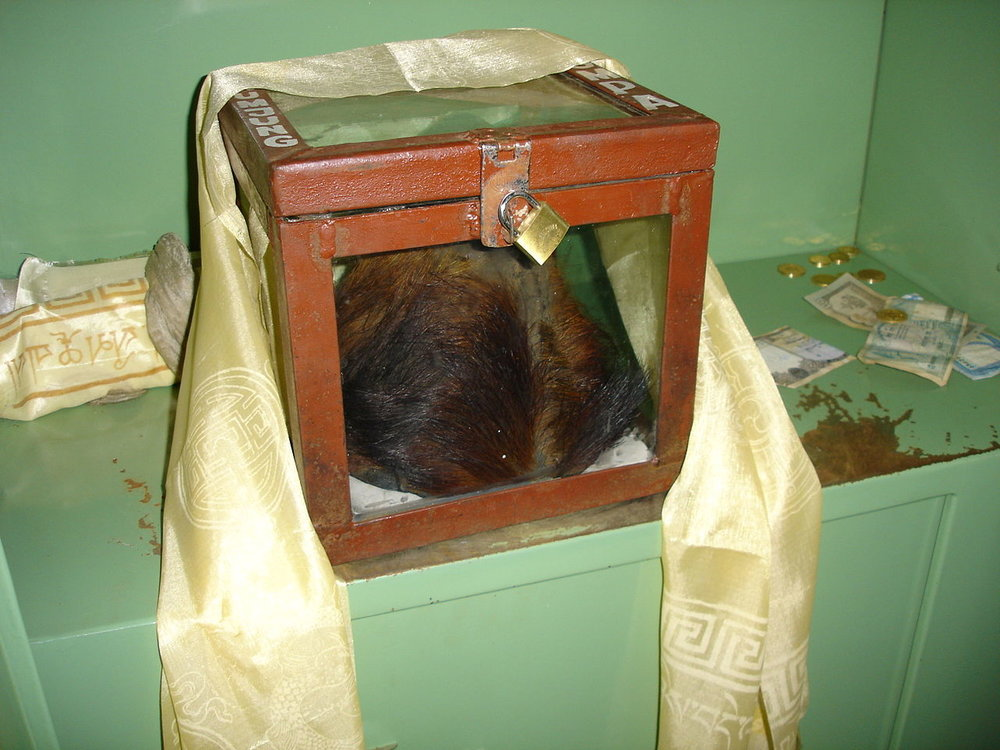 On display at the Khumjung monastery in Nepal is a relic some believed was the scalp of a Yeti.  However, it seems DNA testing has shown the scalp is actually the rump hide from a goat.