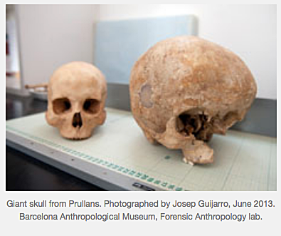 Giant skull from Prullans - Micah Ewers.png