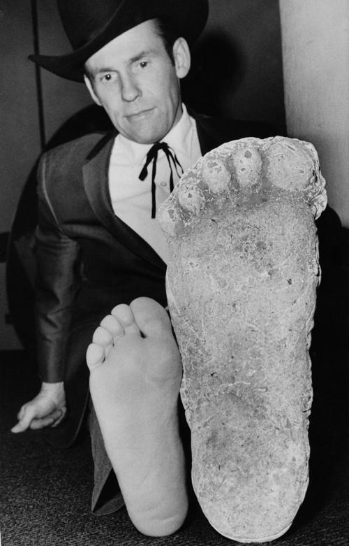 Roger Patterson comparing his foot size with that of the plaster castings he took of Patty.