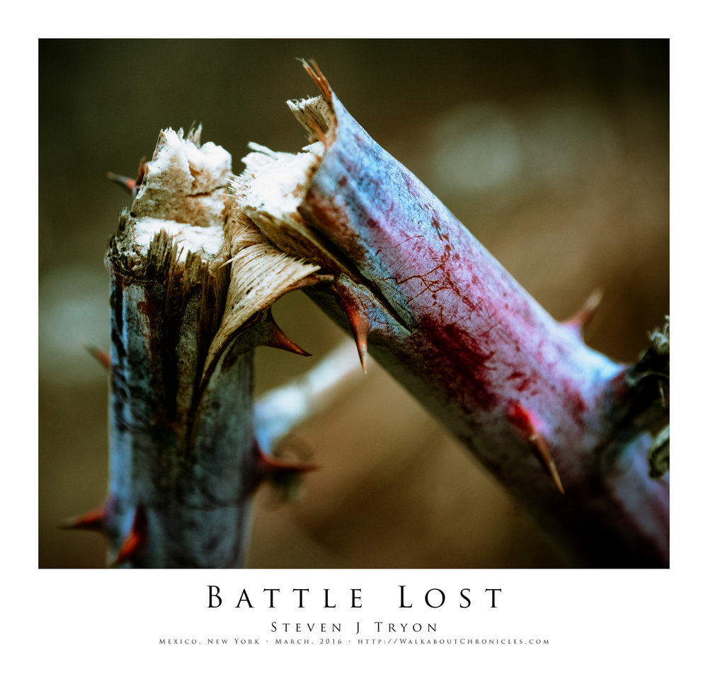Battle Lost