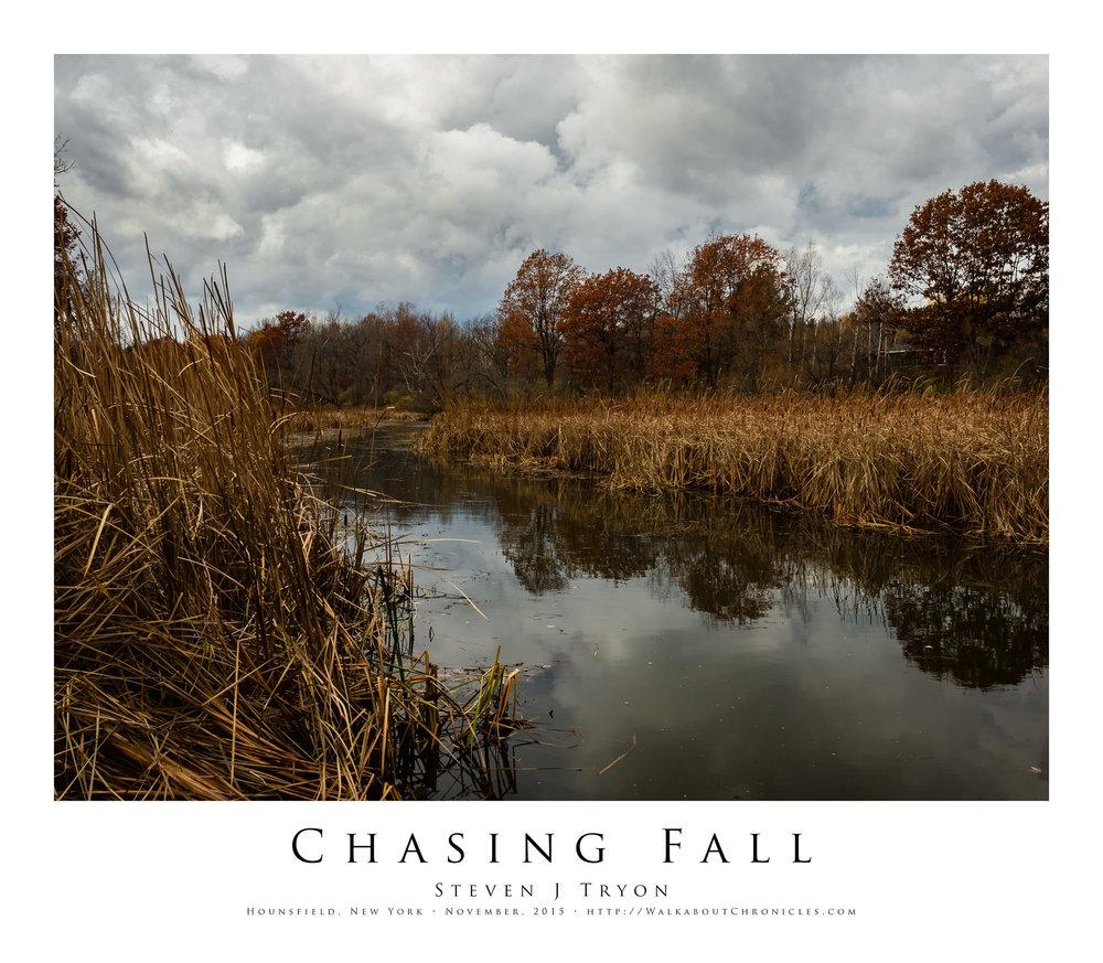 Chasing Fall