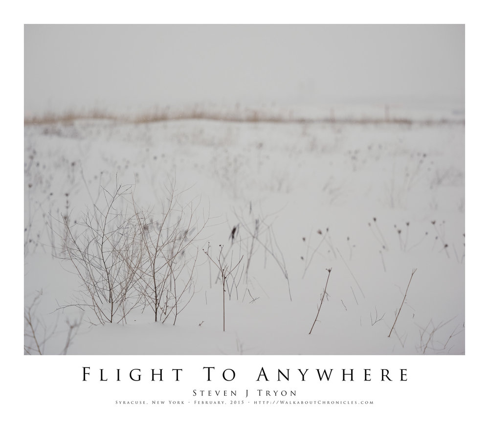 Flight To Anywhere